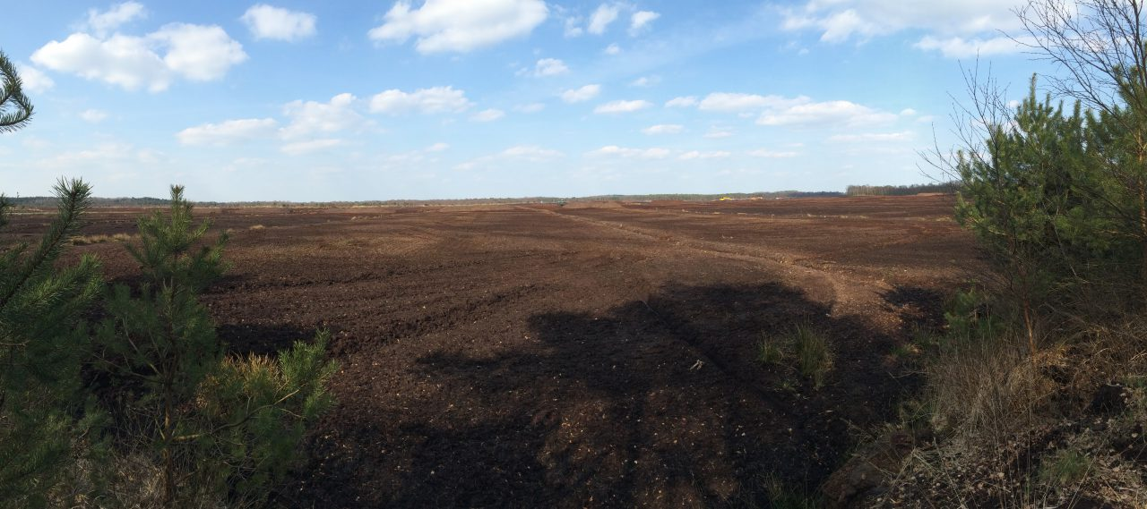 Ein Panoramabild - Torfabbau